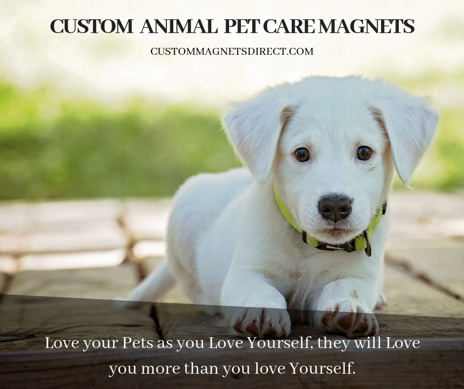 A Dog Is The Only Thing On Earth That Loves You More Than You Love Yourself Get The Customized Animal Pet Care Magnets In Your Favour Pet Care Pet Clinic Pets