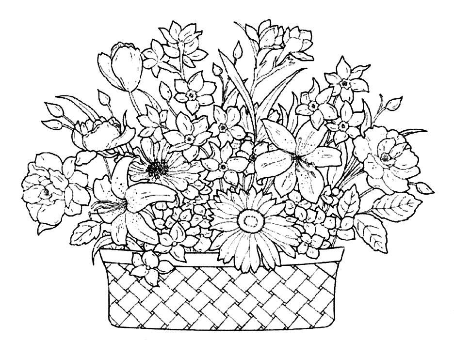 Clever Flower Basket Coloring Pages How To Draw Basket Of Flowers