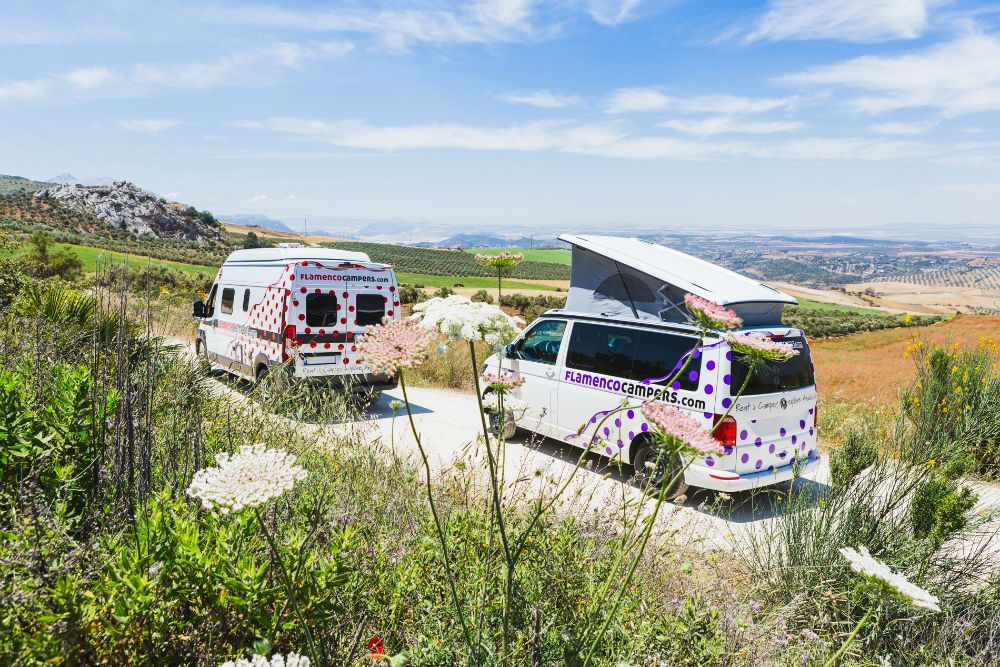 Fancy an adventure road trip? How about exploring Southern
