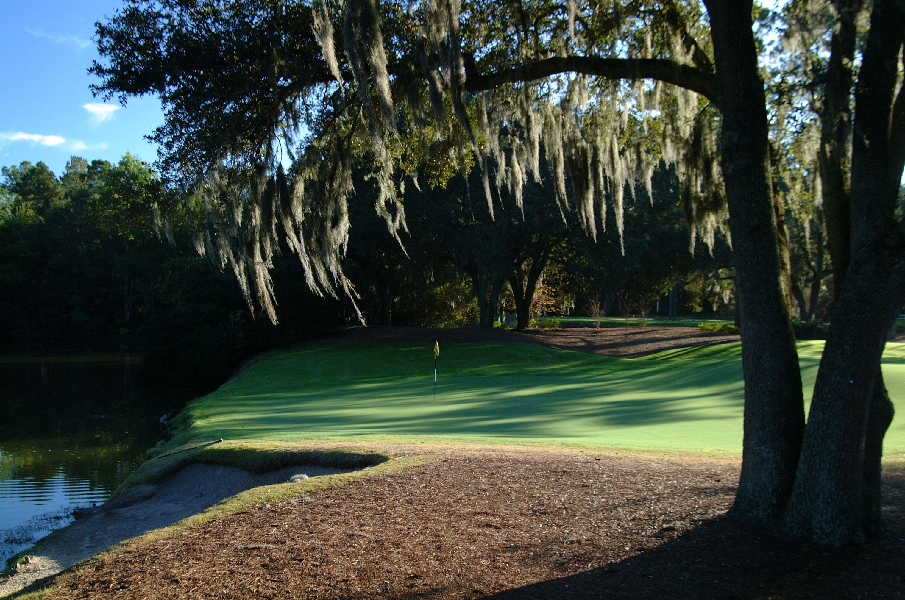 Caledonia golf fish clubtop 25 courses in the south