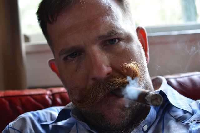 Cigar smoking bear man sex