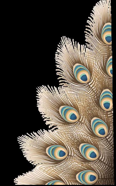 Trujen Png Jagannath Puri Vishnu Transparent Background Png Clip Art Puri Vishnu International Society Feather Background Transparent Background Ganesh Art