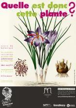 Cours de botanique / initiation : le nom des plantes : science, folklore, humour et poésie