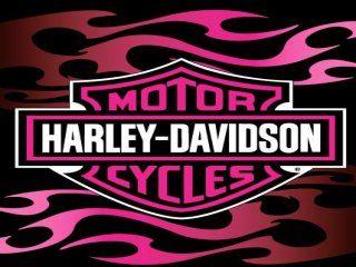Harley Davidson Wallpapers Screensavers 320x240 Flamin Pink Free Wallpaper Screensaver