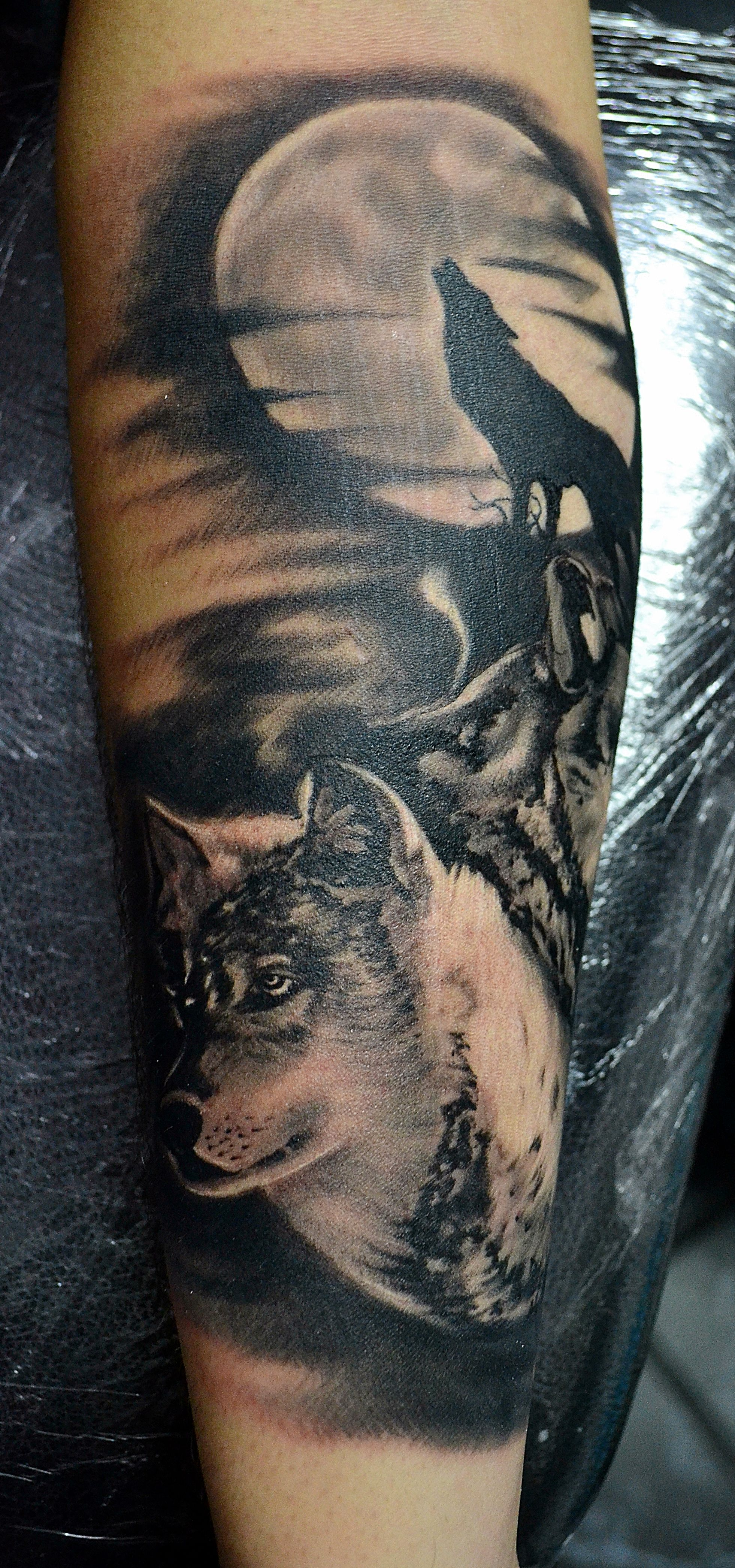 grey wolf howling tattoo the image kid has it. Black Bedroom Furniture Sets. Home Design Ideas