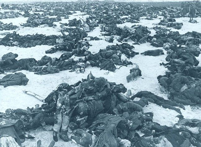 The cost of Nazi expansionism and folly - Dead German soldiers after the Battle of Stalingrad. 1943