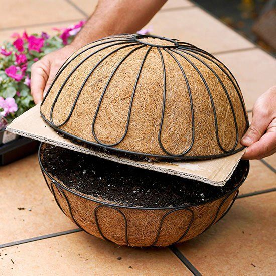 to Plant a Beautiful Hanging Basket in Just 20 Minutes 101027000101027000
