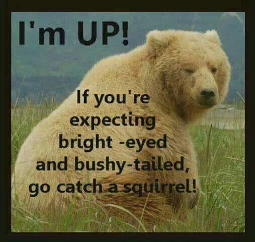 Image result for i'm up
