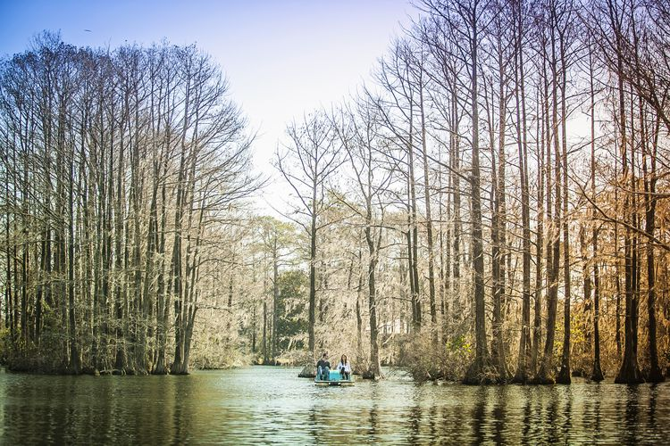 Greenfield Lake Park, Wilmington, NC | ME | Engagement ...