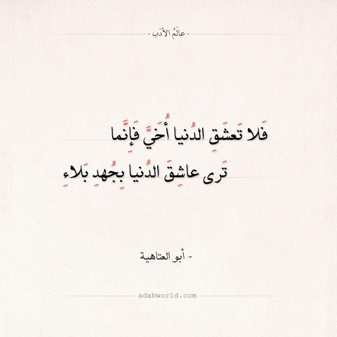 من اجمل ابيات الشعر في الزهد لـ أبو العتاهية عالم الأدب Arabic Quotes Quotes Arabic Calligraphy