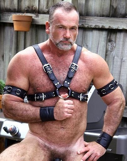Gay leather bears big cocks Nude Gay Leather Bear Gay Fetish Xxx