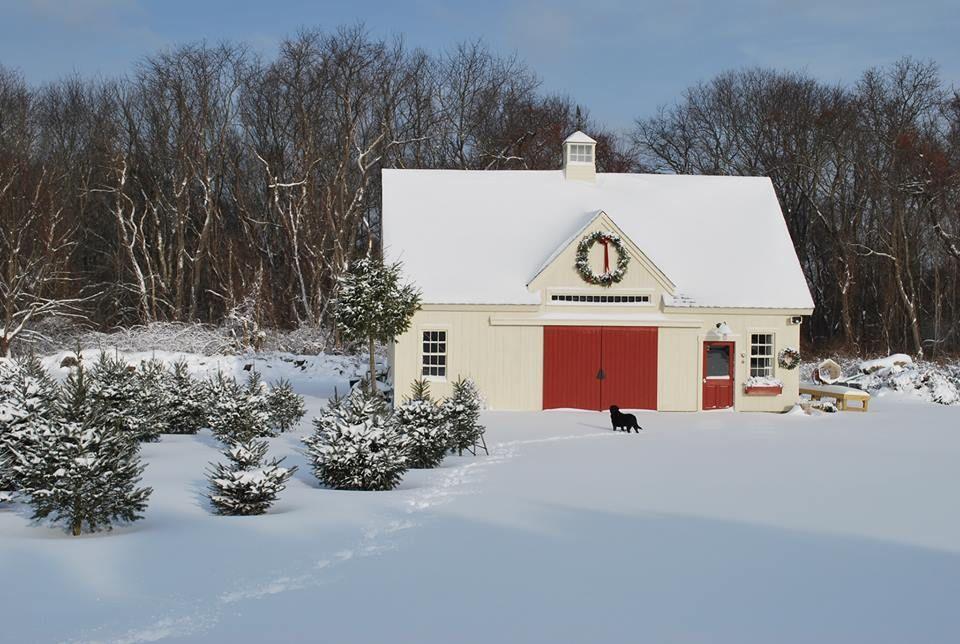 24 36 Christmas Tree Barn Yankee Barn Homes Beautiful Houses Interior Barn Homes Floor Plans