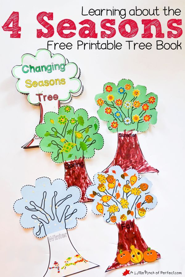 learning about the 4 seasons cute free printable tree book fall activities seasons. Black Bedroom Furniture Sets. Home Design Ideas