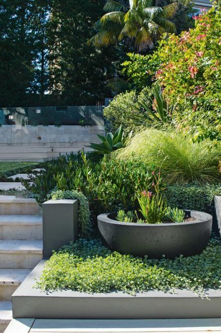 4 Plant Picks For A Coastal Garden Coastal Gardens Townhouse Garden Garden Landscape Design