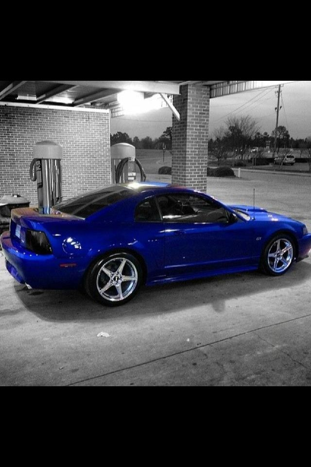 New Edge Mustang Buying A New Car Pinterest Mustang