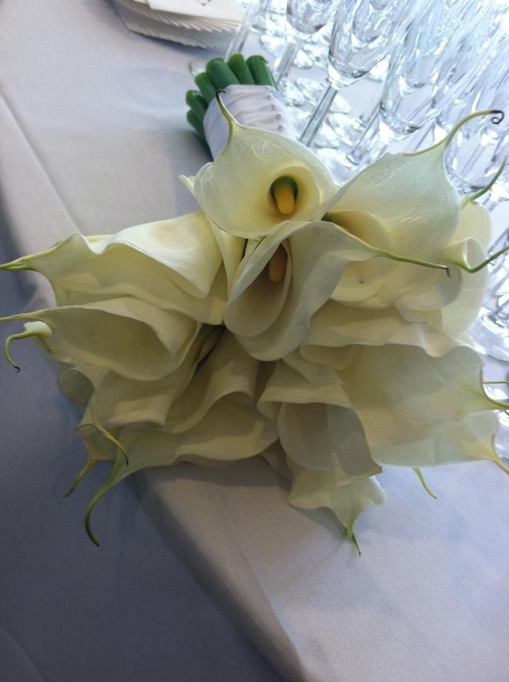 Wedding Flowers Like White Calla Lily Make This Bouquet Dallas By AntebellumDesign