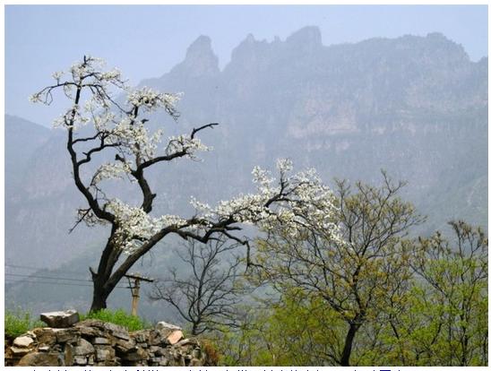 中國有個村子,被稱為世界第9大奇迹,是世界上最危險的村莊!你知道嗎? - 愛經驗