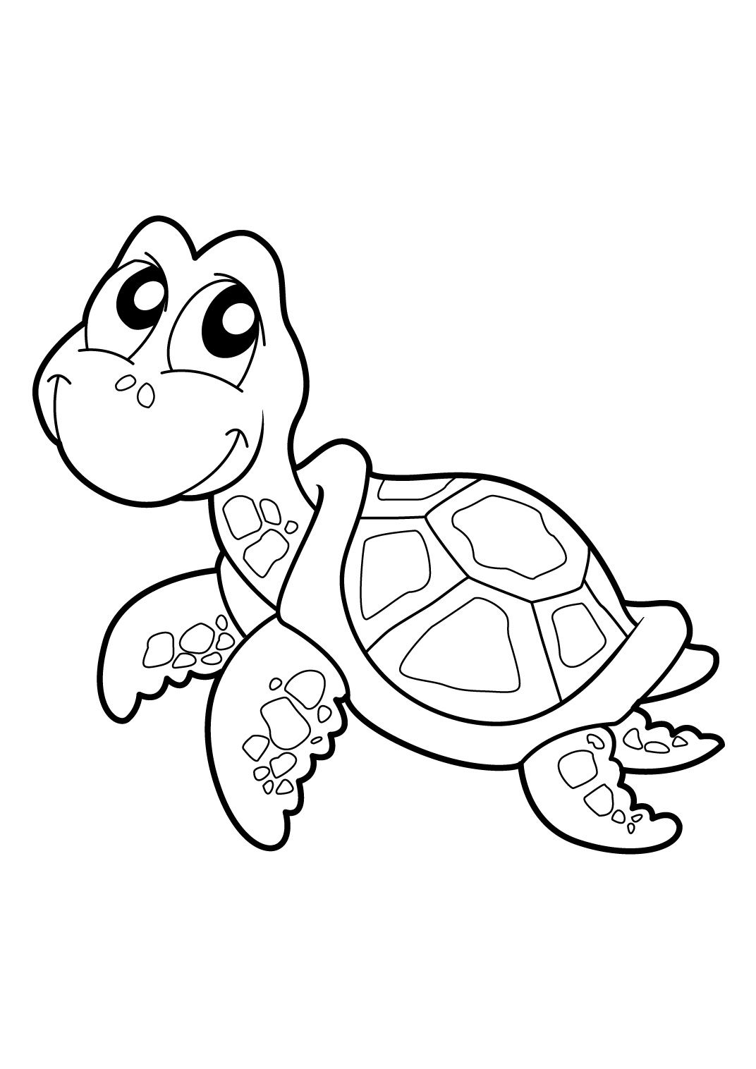 Tortue Coloring Pages Dessin Tortue Dessin Et Coloriage