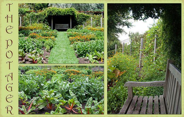 Beautifully designed vegetable garden parterre or portage