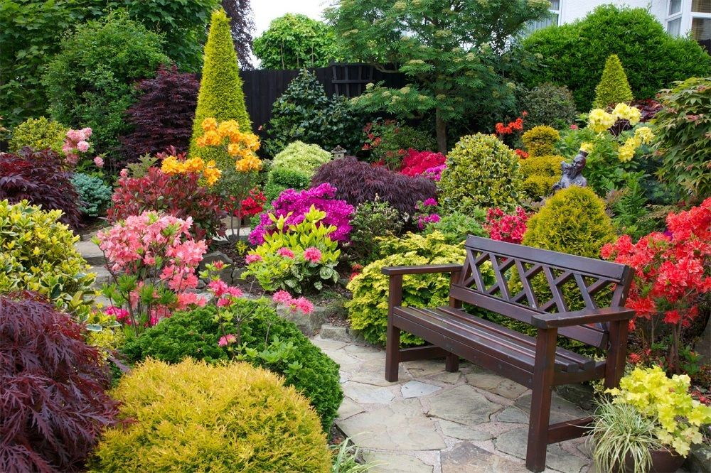 The perfect combination of different kinds of plants in a small area