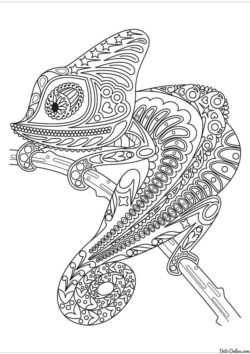 раскраска хамелеон на ветке отрисовки и раскраски