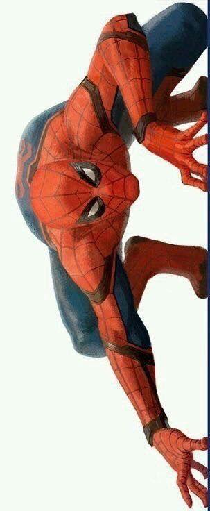 The Best Hero Spiderman Tom Holland Spiderman Marvel Comics A