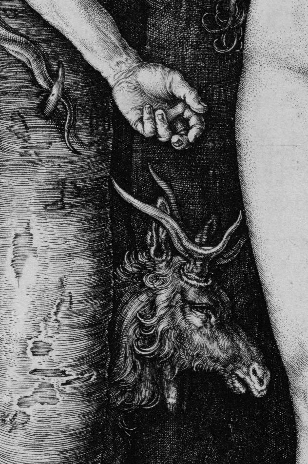funeral-wreaths:    Albrecht Dürer,Adam and Eve(detail), 1504
