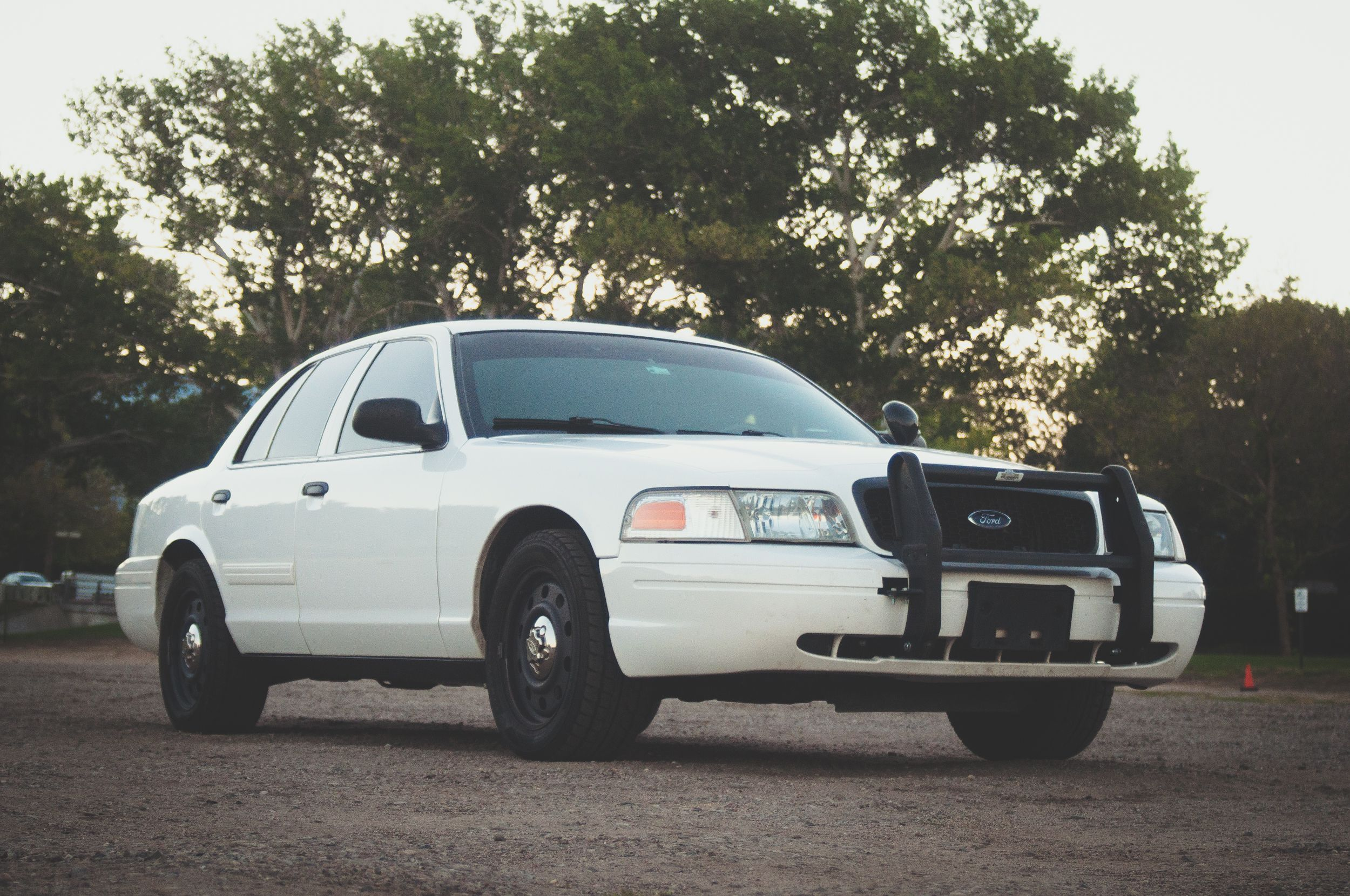 Your Used Crown Victoria Police Interceptor Buyer S Guide