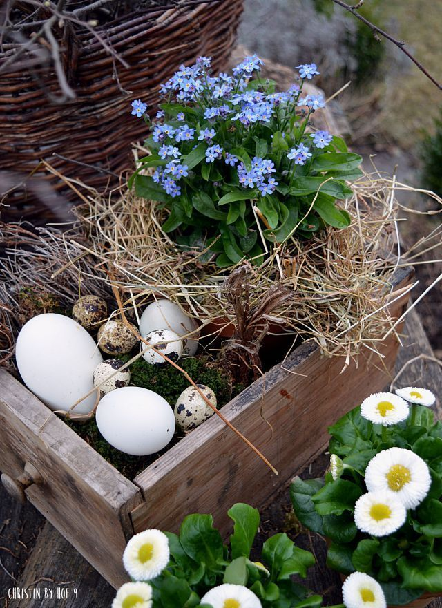 Photo of Courtyard 9: Easter in the garden ……