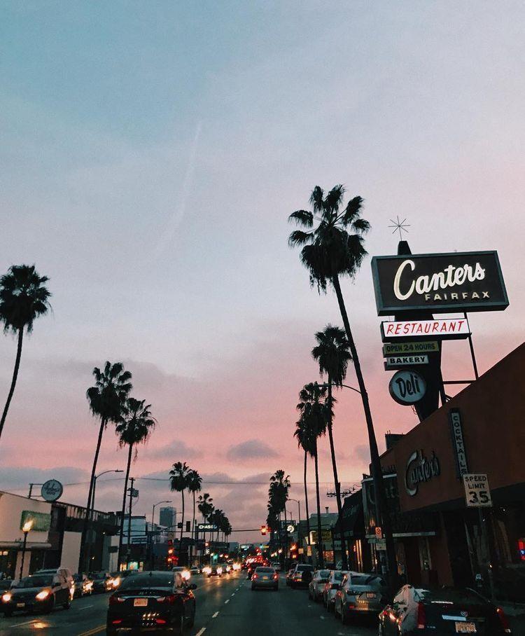 Wallpaper Los Angeles: Hintergründe, Palmen
