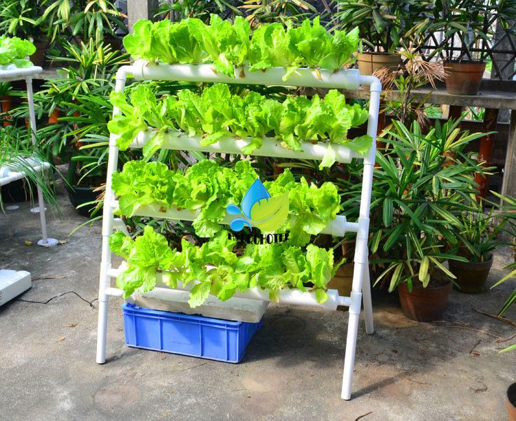 NFT PVC hydroponic hydroponics 35 site system setup kit | Hydroponics system,  Hydroponic farming, Hydroponic gardening