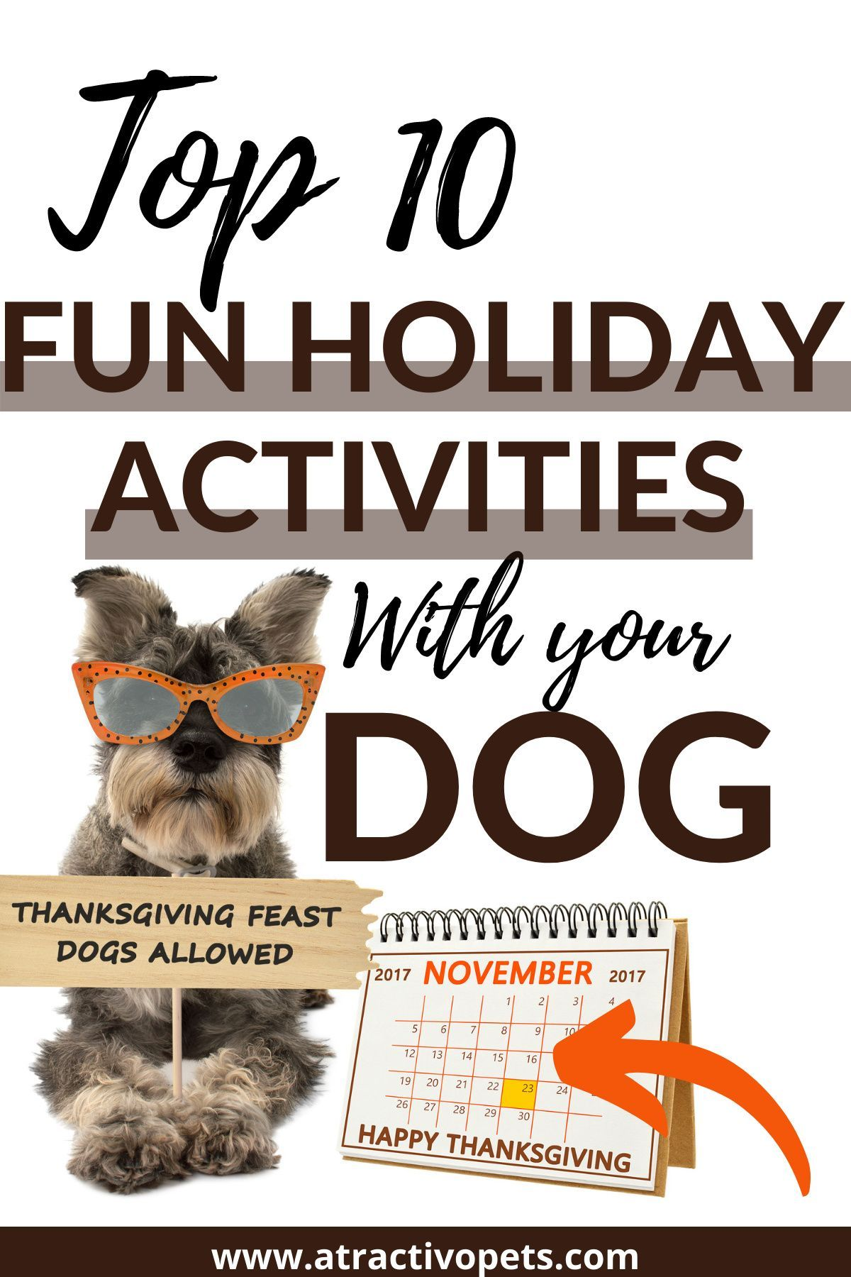 Top 10 Thanksgiving Activities With Your Dog In 2020 Dog Thanksgiving Your Dog Fun Activities To Do