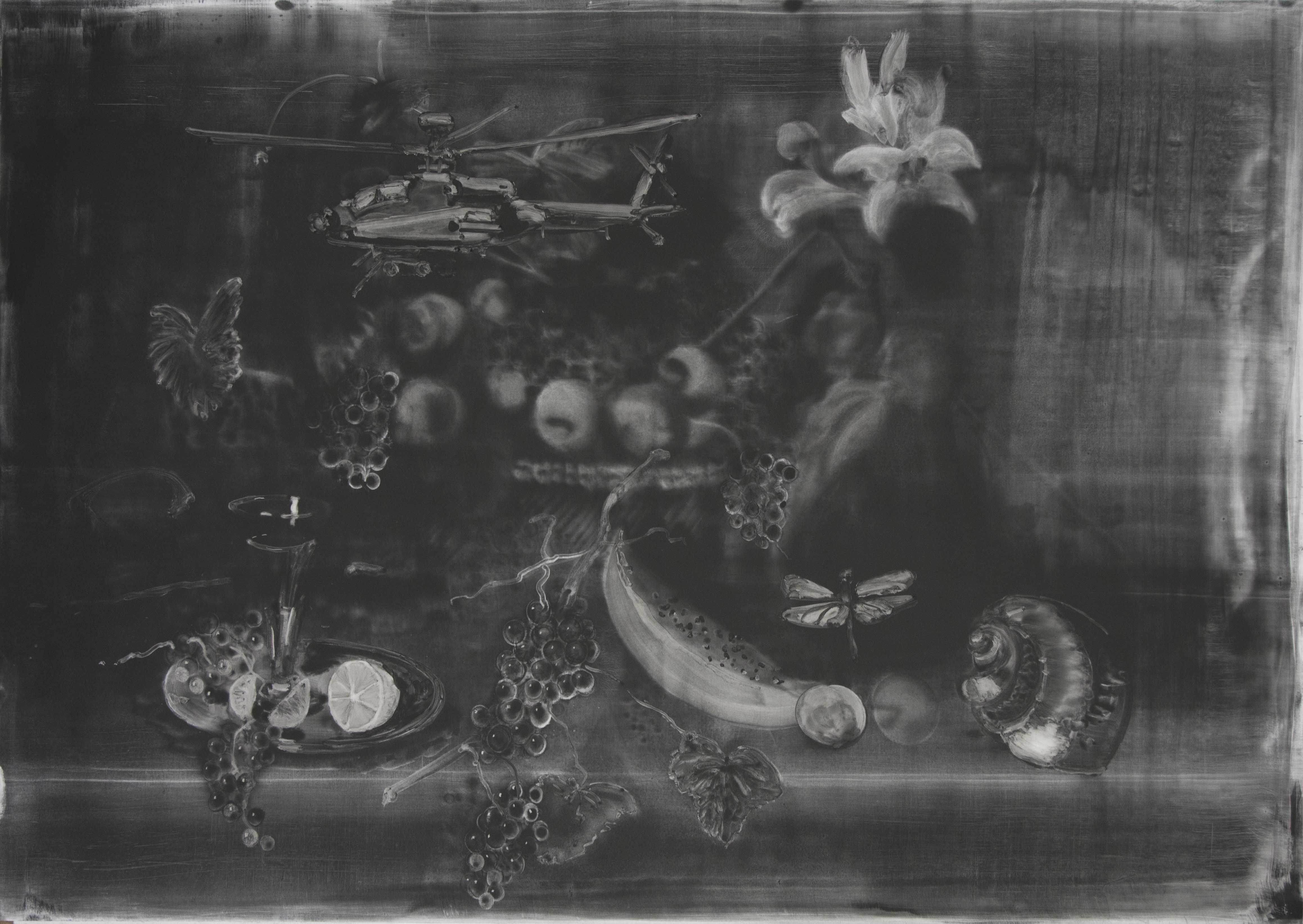 Christopher Cook 'Still life with dragonfly' graphite and oil on paper 72 x 102  2017