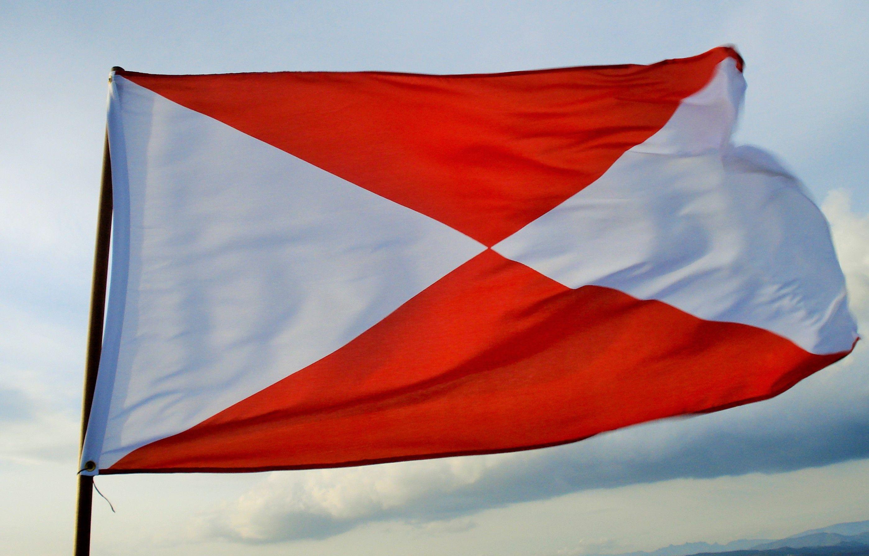Bandeira de Vigo