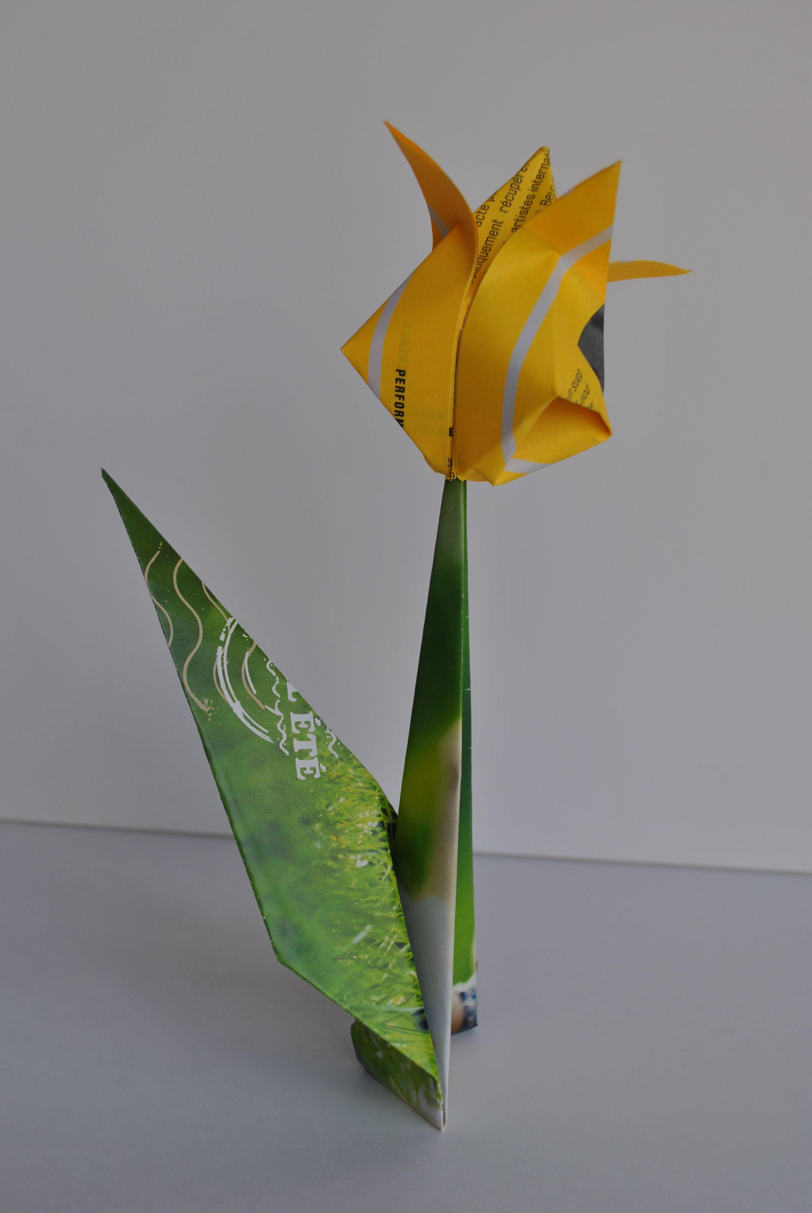 Encore une fleur pour le printemps, une tulipe cette fois-i.