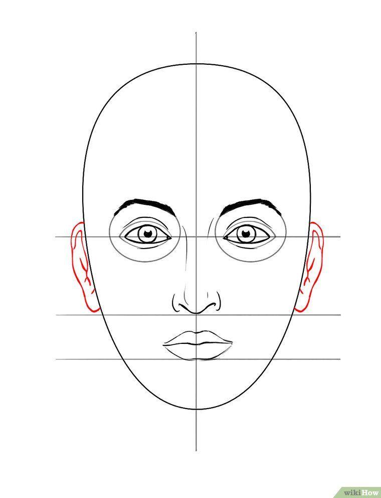 Préférence Come Disegnare un Volto: 11 Passaggi (Illustrato) | Alberi  XL71