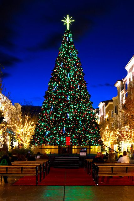 Nevada Christmas Christmas Lights Christmas World Outdoor Christmas