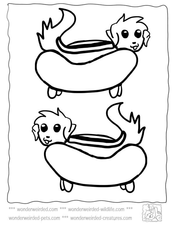 food coloring pages cartoon hot dog at wwwwonderweirdedcomfood coloring