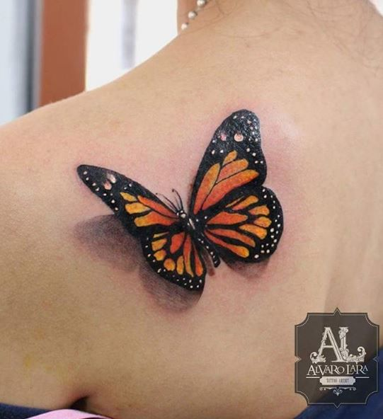 3d butterfly tattoo tatouages papillon et bientot. Black Bedroom Furniture Sets. Home Design Ideas