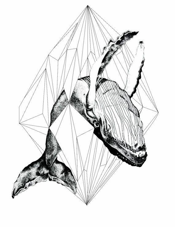Geometric whale art print by samanthajanemargaret on Etsy