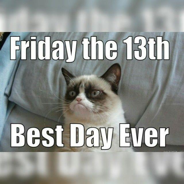 grumpy cat friday the 13th grumpy cat instagram instagram