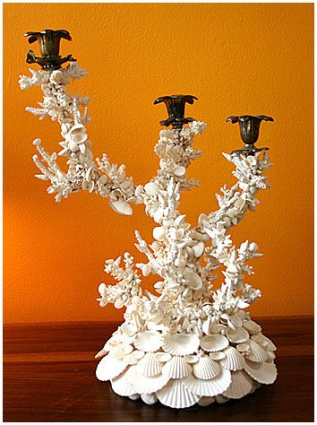 Shell encrusted candlestick