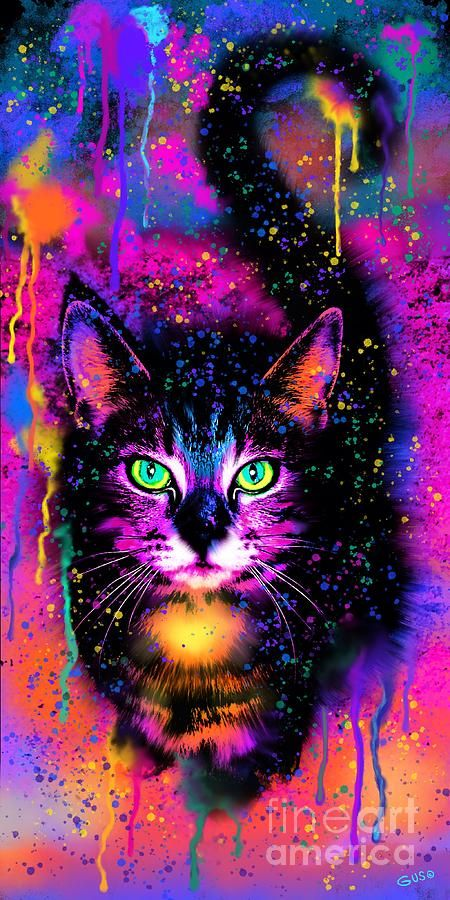 Pin On Cats Art Drawing Colorful cat wallpaper phone