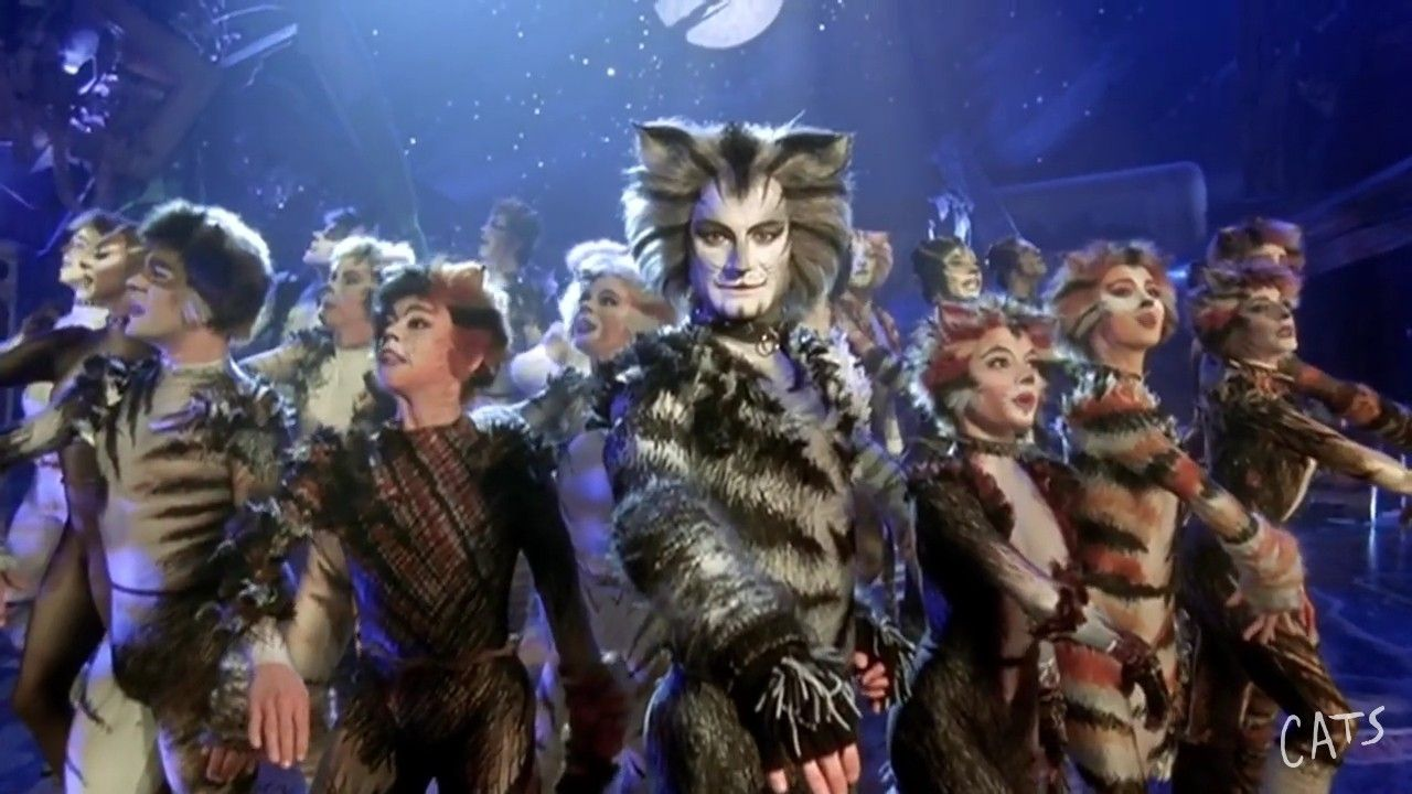 Love the whole look Cats musical, Cat costumes, Cats