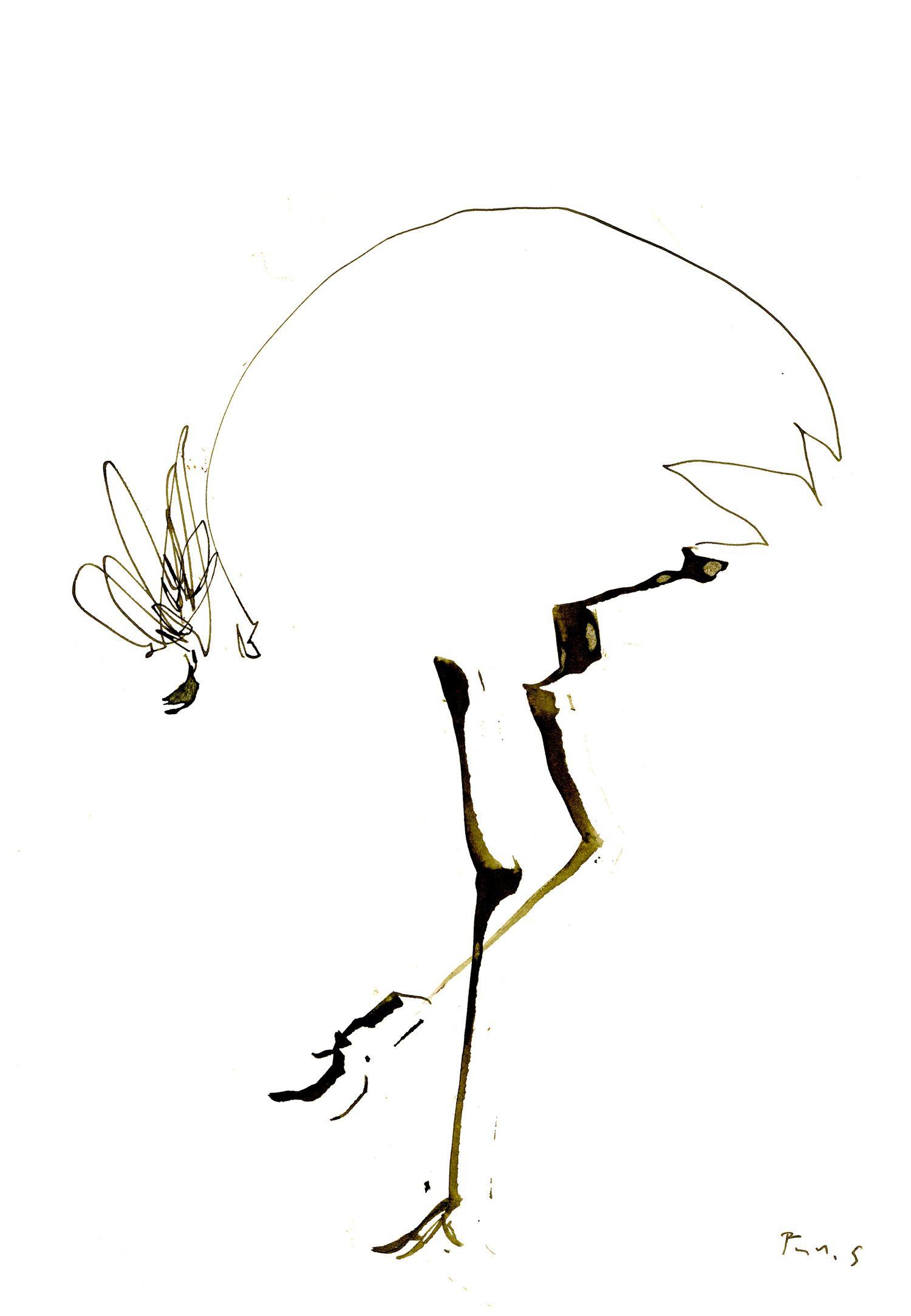 鳥 #イラスト #鳥 #アート #ドローイング #インク #ペン #シンプル #動物