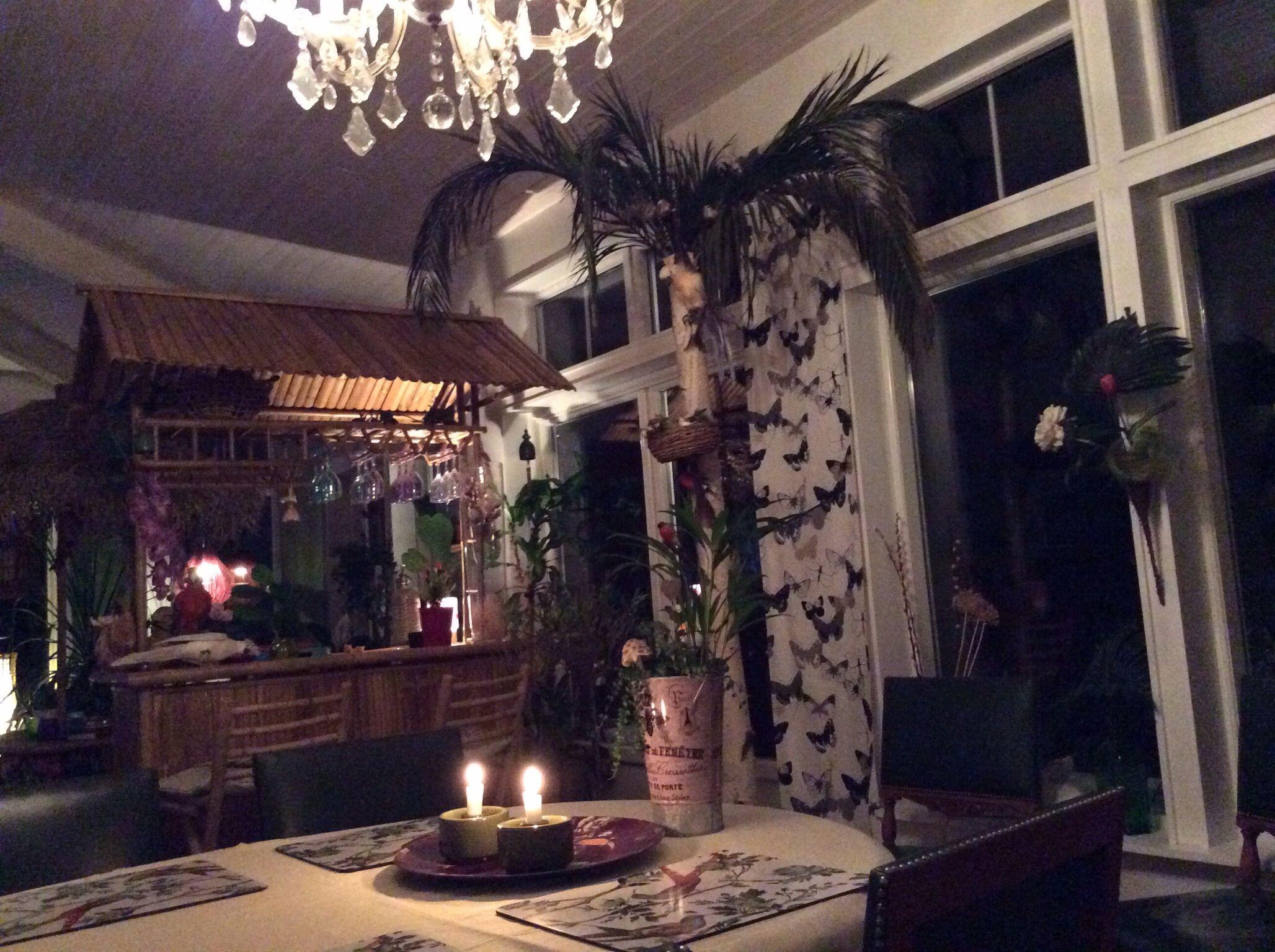 Björkstam med palmblad
