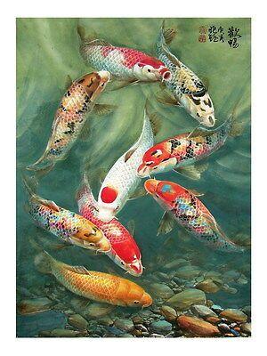Modern sitting wall decor print oil painting Feng Shui Fish Koi Painting dw39