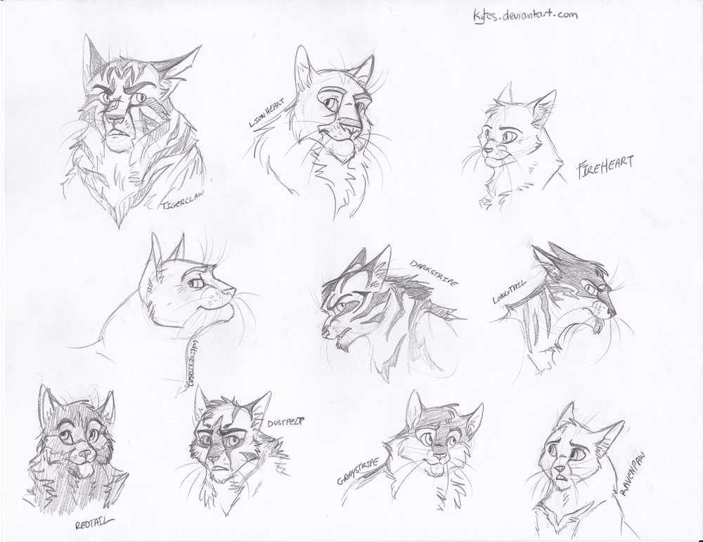 Warriors Headshots 1 By Kytes Deviantart Com On Deviantart With