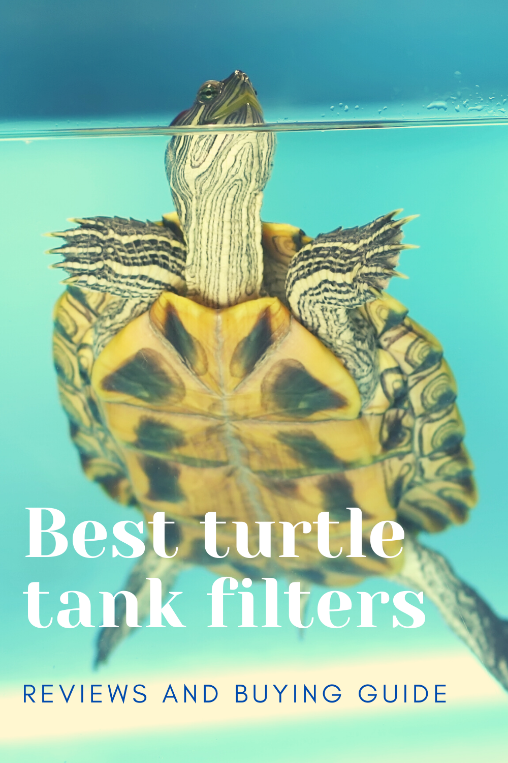 Best Turtle Tank Filters Reviews And Buying Guide in