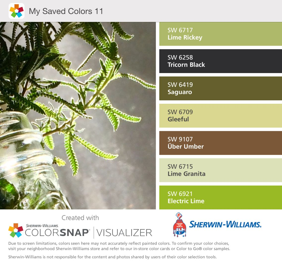 Sherwin Williams color palette app French lavender, lime Rickey, tri ...